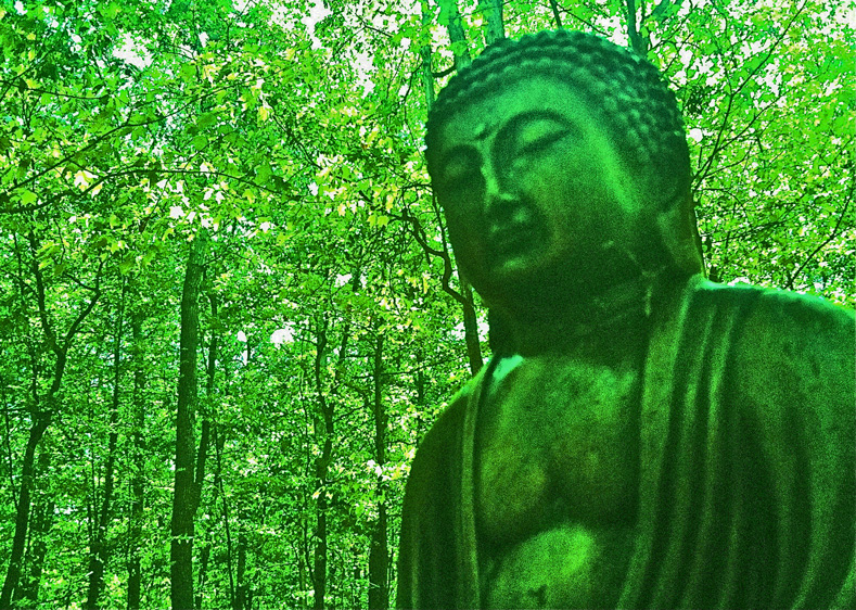 west green buddhist personals Search our complete business directory, with customer reviews, business profiles, expert answers and more we will help you find exactly what you need.